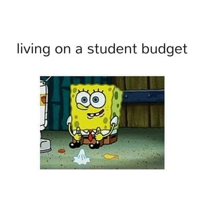 student budget meme