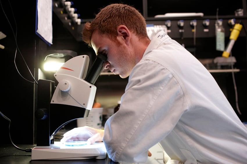 Student examining something through a microscope